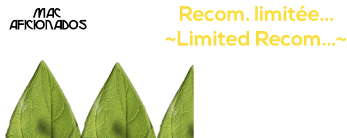 4-Recom-limitee